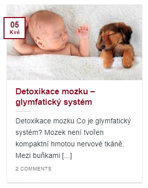 Článek detoxikace mozku - glymfatický systém