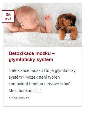 Náhled článku Detoxikace mozku - glymfatický systém