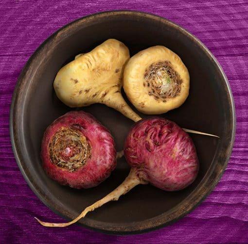 kořeny peruánské Macy