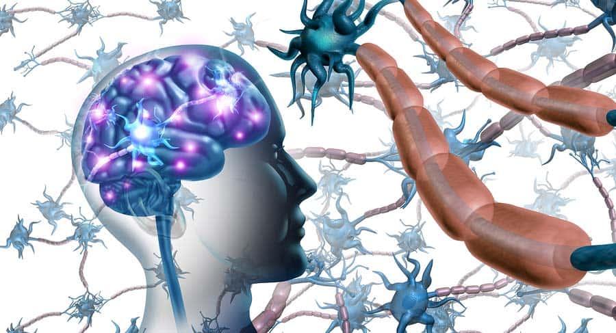 grafická ilustrace hlavy se světélkujícím mozkem a nervovými buňkami okolo