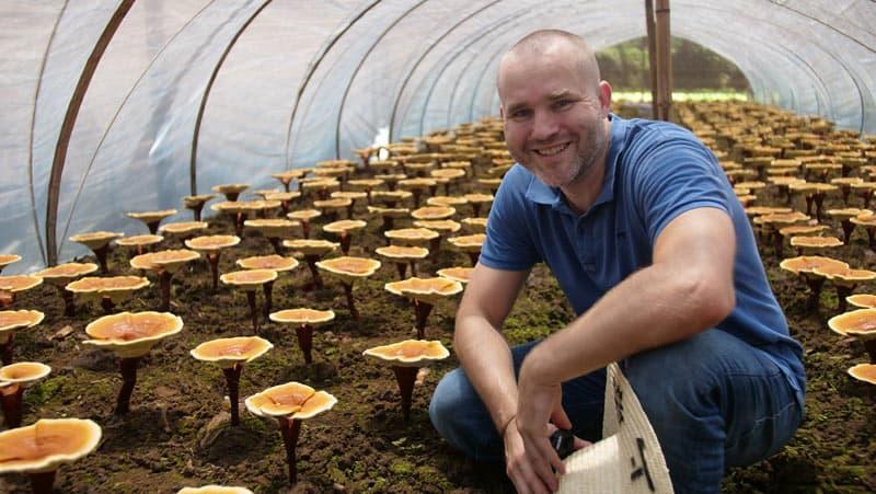 Pavel Štěpka ve skleníku s Duanwood Red Reishi