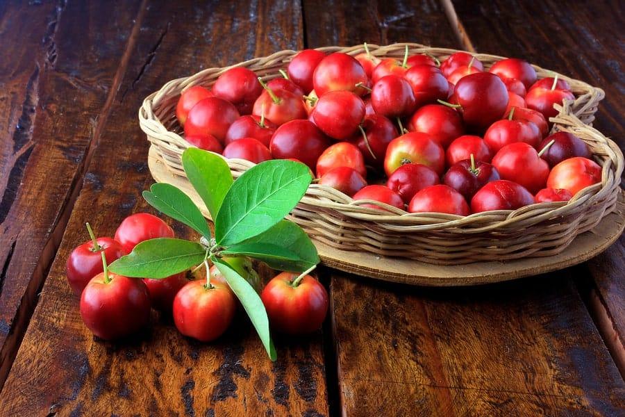 košík s plody Aceroly