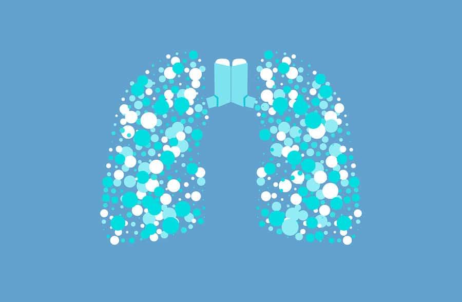 Koncept plic postižených astma
