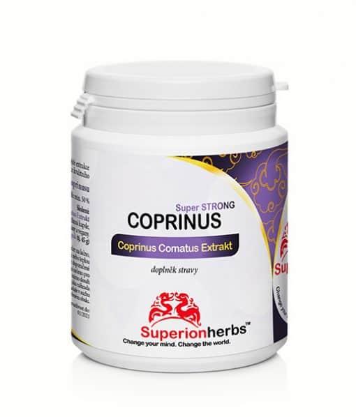 Coprinus Comatus Extrakt Super Strong 100% Coprinus comatus