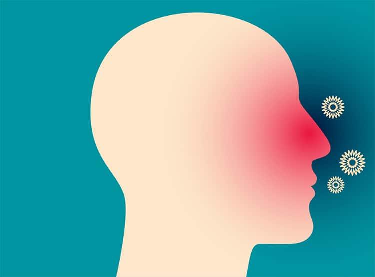 zobrazení lidské hlavy, poletujících alergenů a zarudlého nosu