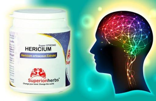 doplněk stravy Hericium super strong, Superionherbs a obrázek hlavy s barevným vyzobrazením nervové soustavy