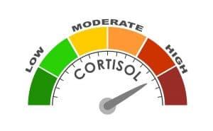 ručička ukazující vysokou hladinu kortizolu na barevné stupnici