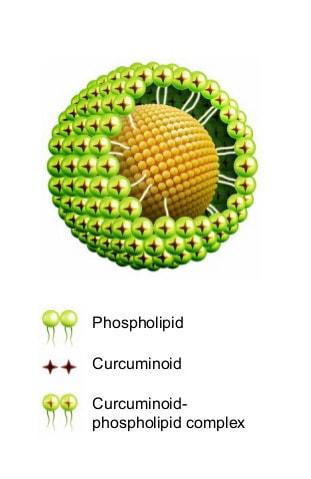 kurkumin phytosome