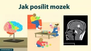kreslená vizualizace mozku a aktivit k procvičení mozku