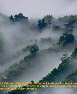 Fotografie pohoří s terasami v mlze, kde se pěstuje duanwood reishi