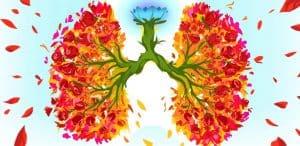 relaxační metoda - řízené dýchání nechá vaše plíce rozkvést